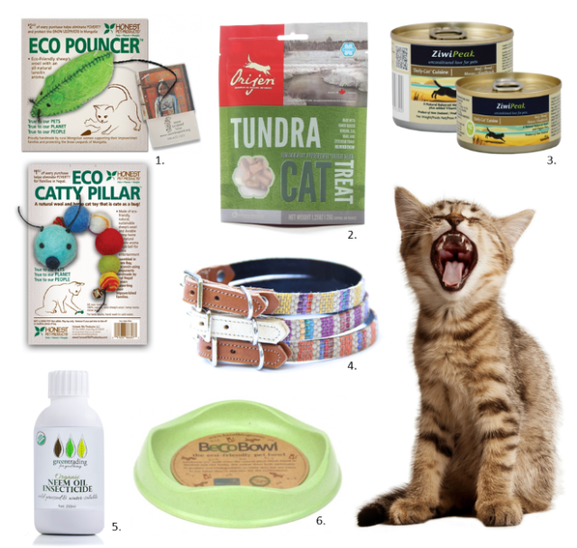 Eco-friendly cat products