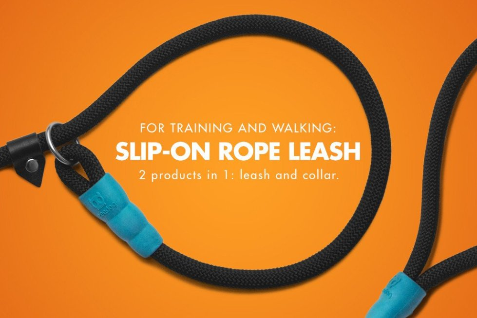 zeedog_slip-on_leash