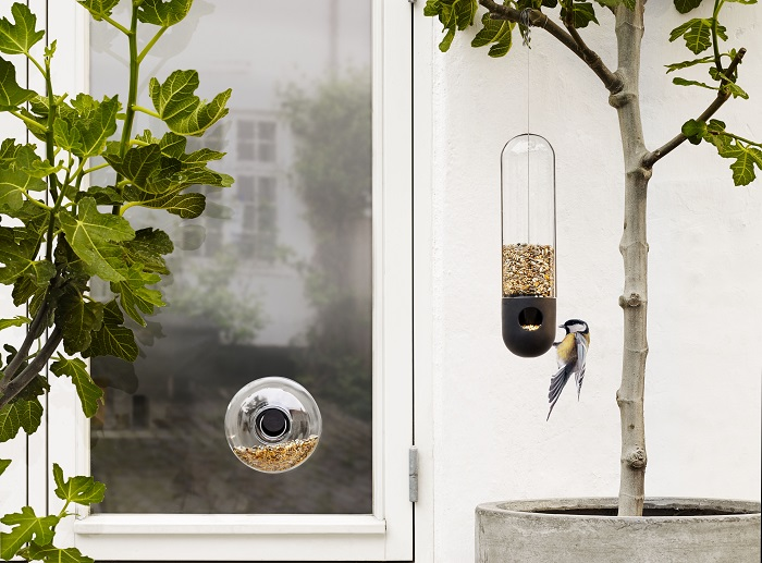Outdoor_bird_feeders